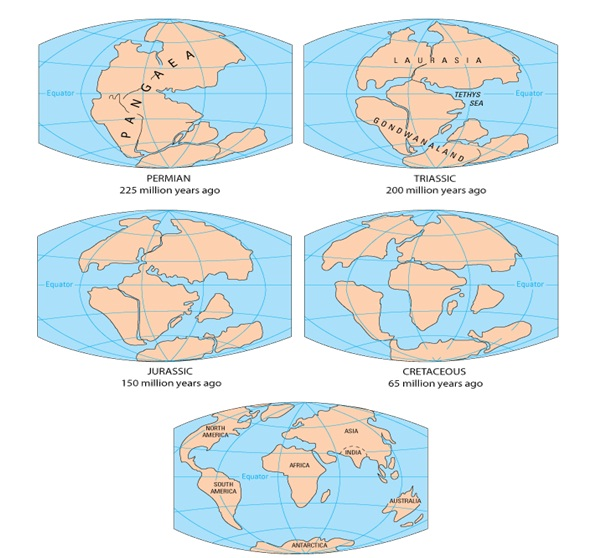 Concept Map Of Continental Drift.Plate Tectonics Wfs