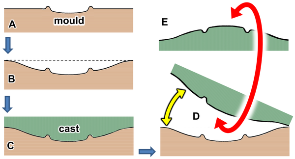Impact Of Sauropod Dinosaurs On Lagoonal Substrates In The Broome Sandstone  Lower Cretaceous